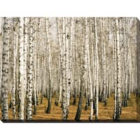 """Birch Trees 3"" Giclee Print Canvas Wall Art"