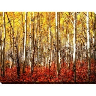"""Birch Trees"" Giclee Print Canvas Wall Art"