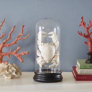 Madison Park Signature Casey White Bleached Crab Under Glass