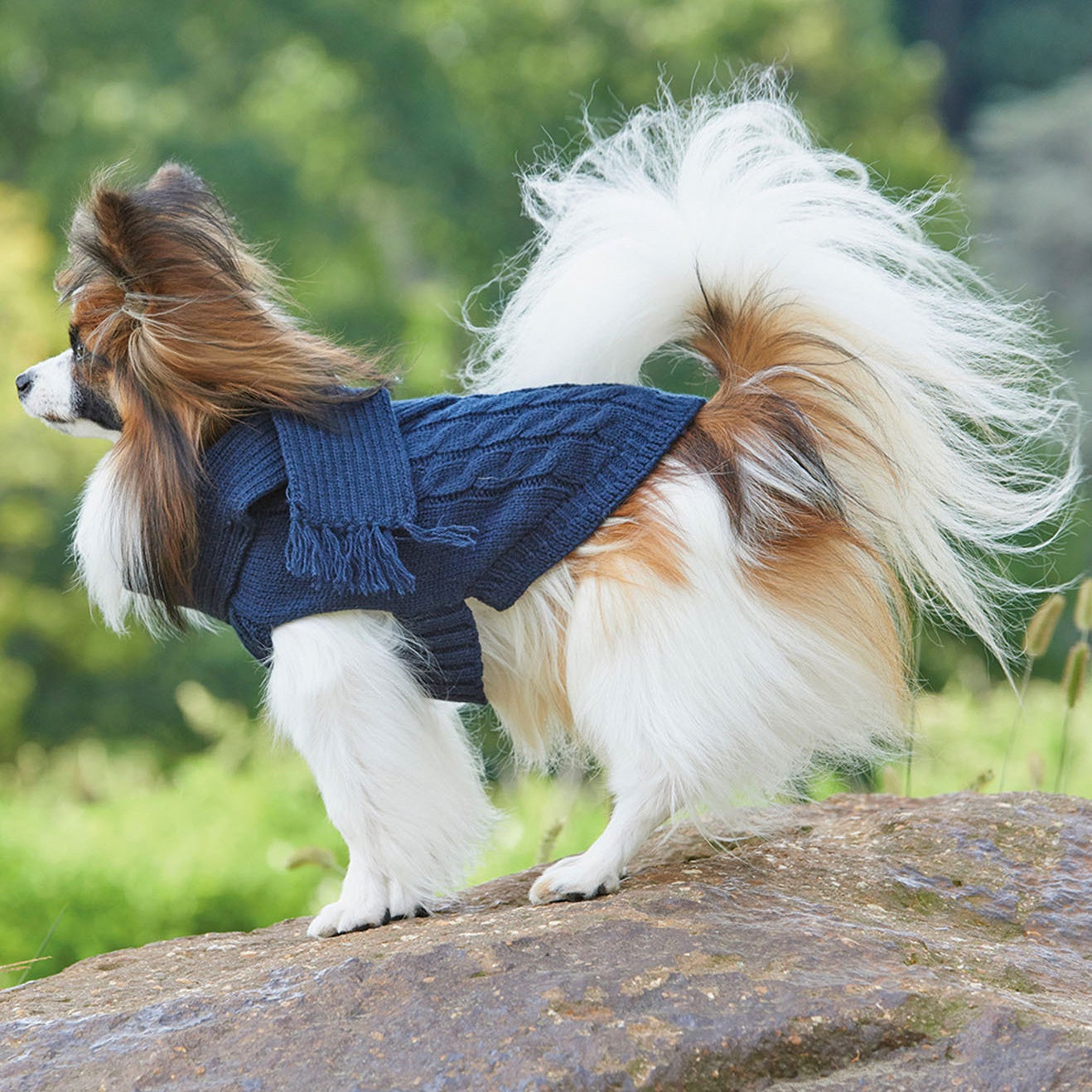 Ethical Scarf Dog Sweater (Extra Large), Blue, Size XL