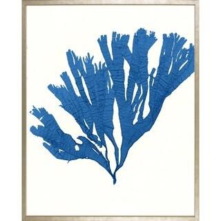 Art Virtuoso 'Azure Seaweed' Framed Art Print