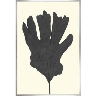 Art Virtuoso 'Black Ferns - Large' Framed Art Print