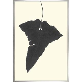 Art Virtuoso 'Black Ferns' Large Framed Art Print