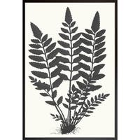 Art Virtuoso 'Fern Silhouette' Large Framed Art Print
