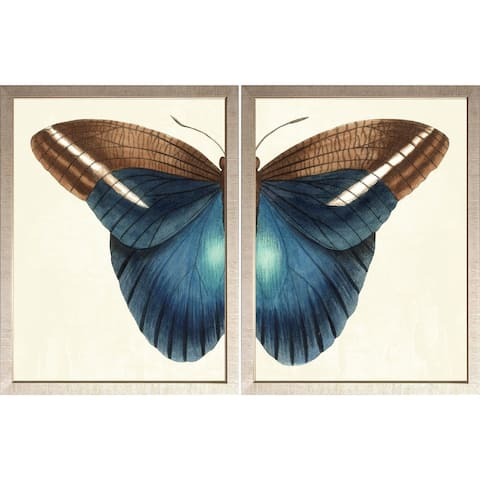 Art Virtuoso 'Butterfly Duo' Small Framed Art Print Set - Distressed Silver Finish