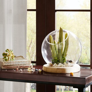 Madison Park Amory Clear Bubble Terrarium with Wood Base- Large