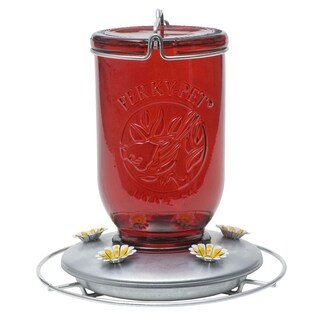 Perky Pet 32 Oz Red Glass Mason Jar Hummingbird Feeder