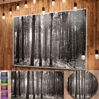 Designart 'Beautiful Misty Forest in the Autumn' Large Forest Metal Wall Art