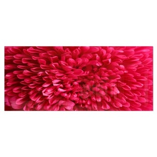 Designart 'Pink Aster Flower Petals Close-up' Large Floral Metal Wall Art