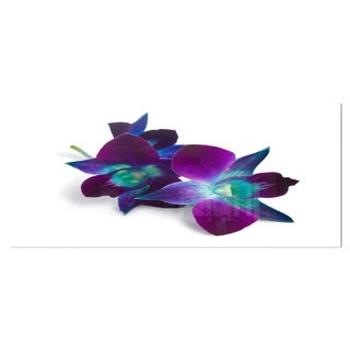 Designart 'Deep Purple Orchid Flowers on White' Flowers Metal Wall Art