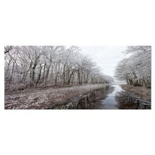 Designart 'Trees in White Winter Landscape' Landscape Metal Wall Art