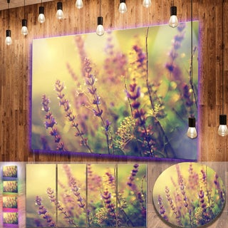 Designart 'Vintage Photo of Wild Purple Flower' Contemporary Flower Metal Wall Art