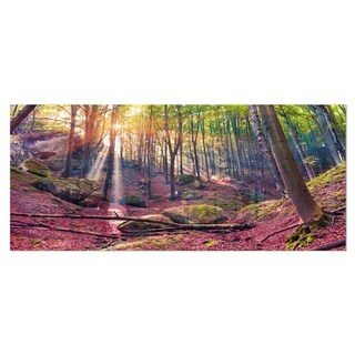 Designart 'Autumn Morning in Mystical Woods' Large Landscape Art Metal Wall Art