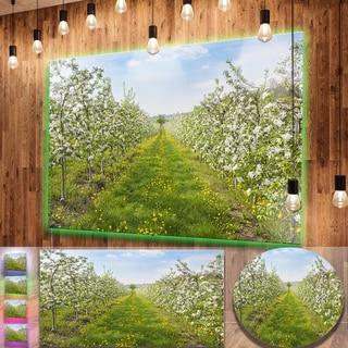 Designart 'Bloomy Peach Forest Photography' Floral Aluminium Art Print