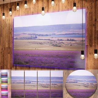 Designart 'Calm Sunset over Lavender Field' Floral Aluminium Art Print