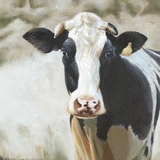 Y-Decor 35.4 in. H x 35.4 in. W 'Curious Cow' Original Painting on Canvas