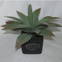 Jeco 11-inch Artificial Succulent Garden