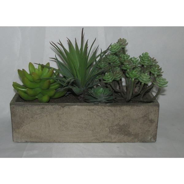 Jeco Resin 6-inch Artifical Succulent Garden