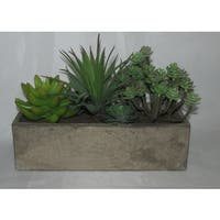 Jeco Resin 6-inch Artifical Succulent Garden