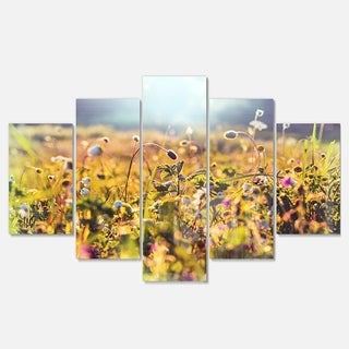 Designart 'Summer Flowers on Sunny Day' Floral Canvas Metal Wall Art