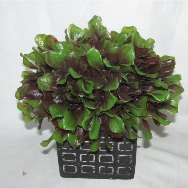 Jeco Half Ball Topiary in Pot
