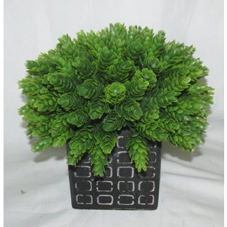 Jeco 'Half Ball In Pot' Polyester/Stone Artificial Topilary Plant