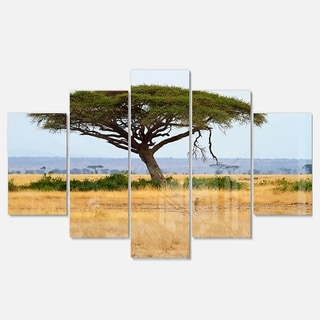 Designart 'Acadia Tree and Cheetah in Africa' Oversized African Landscape Glossy Metal Wall Art