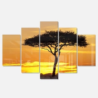 Designart 'Beautiful Sunset Through Acacia Tree' Extra Large African Landscape Glossy Metal Wall Art