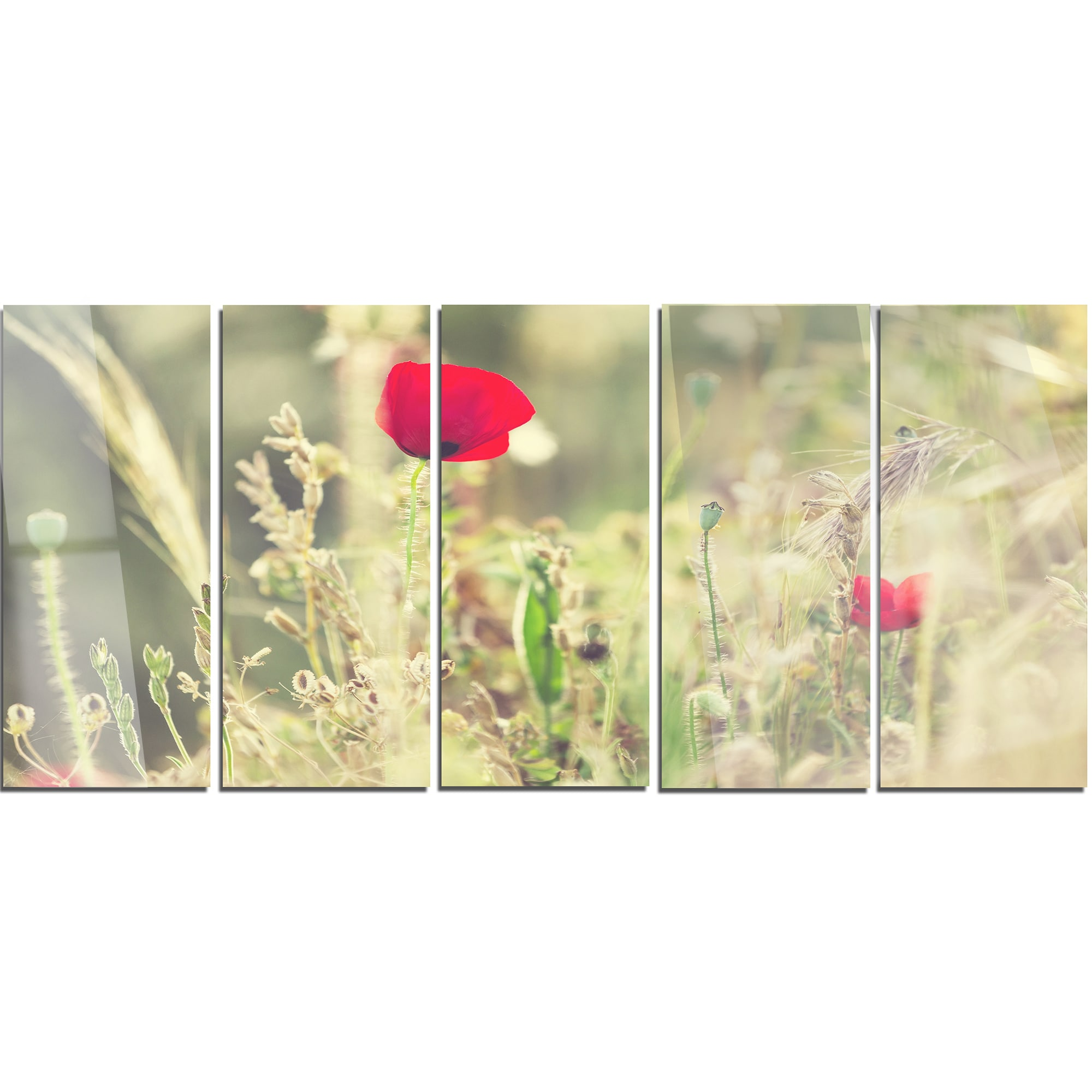 Shop Designart \'Meadow with Wild Poppy Flowers\' Large Flower Metal ...