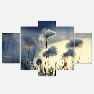 Designart 'Arctic Blooming Cotton Flowers' Large Flower Glossy Metal Wall Art