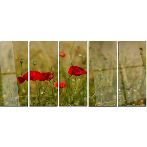Dorable Poppy Wall Art Metal Pictures - All About Wallart ...