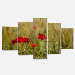 Designart 'Red Poppy Flower Field Background' Large Flower Glossy Metal Wall Art