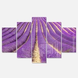Designart 'Beautiful Pattern of Blooming Lavender' Large Flower Glossy Metal Wall Art