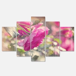 Designart 'Beautiful Pink Rose Flowers' Modern Flower Canvas Metal Wall Art