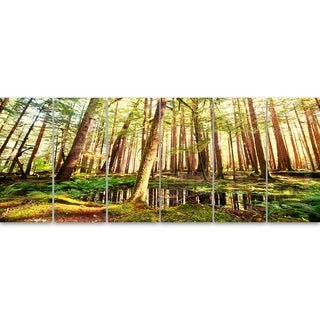 Designart 'Dense Trees in Green Rain Forest' Oversized Landscape Glossy Metal Wall Art