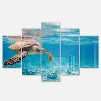 Designart 'Large Hawksbill Sea Turtle' Animal Metal Wall Art