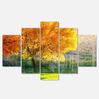 Designart 'Beautiful Autumn Season in Forest' Extra Large Landscape Glossy Metal Wall Art