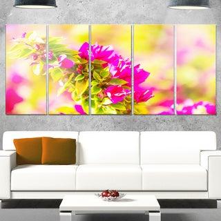 Designart 'Beautiful Pink Bougainvillea Flowers' Floral Glossy Metal Wall Art