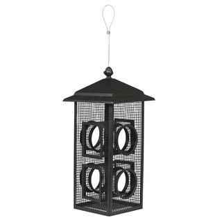 Woodstream Capacity Fly Through Bird Feeder