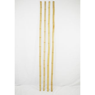25-piece 6' H x 1-inch D Bamboo Pole Bundle