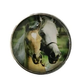 Horses Glass Knob Drawer Pulls - Pack of 6