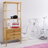Palm Canyon Ocotillo Mid-century Modern Maple Wood Bookcase with Drawers