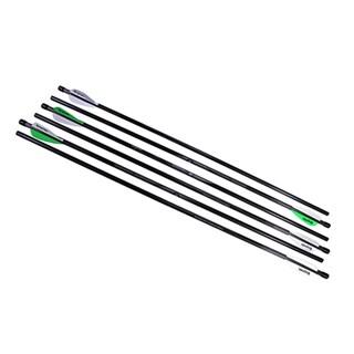 Benjamin Sheridan 375-grain Carbon Fiber 26-inches Airbow 250 Arrows (Pack of 6)