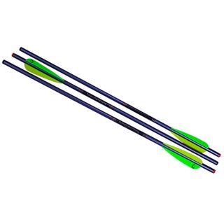 TenPoint Crossbow Technologies Aluminum 20-inch 2219 Arrows (Pack of 3)