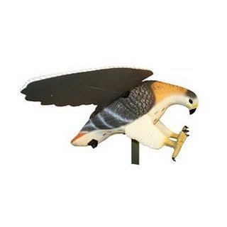 Mojo Decoys MOJO Hawk Hunting Decoy