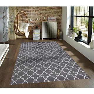 Persian Rugs Modern Moroccan Grey/White Trellis Polypropylene Area Rug (5'2 x 7'2)