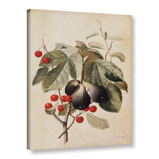 Georg Dionysius Ehret's ' Figs and Cherries,1747' Gallery Wrapped Canvas