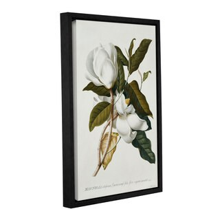 Georg Dionysius Ehret's ' Magnolia' Gallery Wrapped Floater-framed Canvas - White