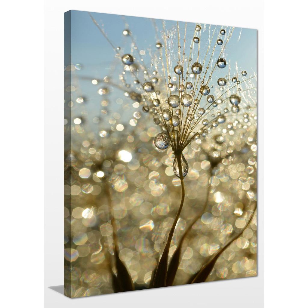 BEAUTIFUL DANDELION FLOWER CANVAS PICTURE #39 STUNNING FLORAL HOME DECOR CANVAS
