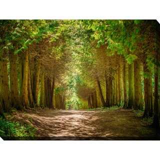 """Walkway Lane Path"" Giclee Print Canvas Wall Art"